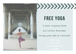 Vinyasa-Flow-Free-Class